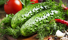 Myths and facts on cucumber