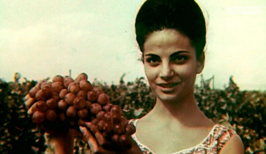 Song of Armenian harvest 1965 [Archive]